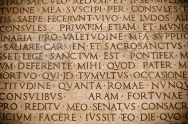 Most medical words are derived from Latin